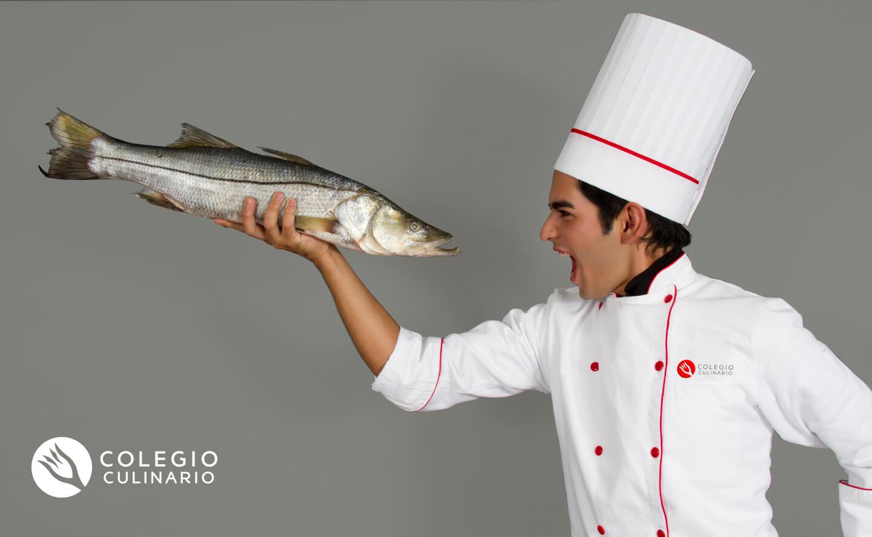 colegio-culinario-9